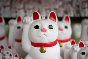 white japanese lucky cats