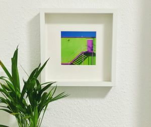 artwork by rusty wiles framed on the wall with deco and plant